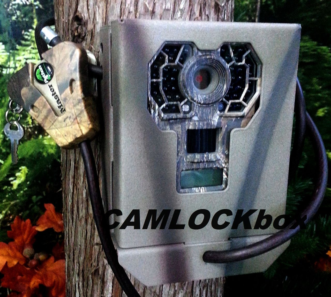 https://store.camlockbox.com/product_images/j/509/Stealth_Cam_G30_G42NG_Security_Box_2__93044.jpg
